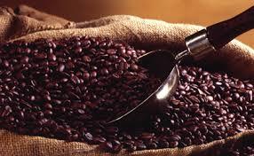 bresil-cafe-3