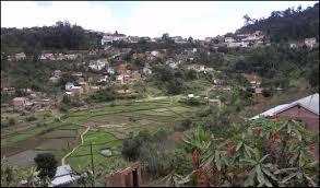 Plantations Madagascar